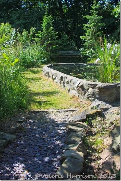 garden-pond-2