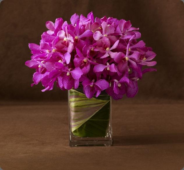 monobotanicalJewel_3_LL belle fleur