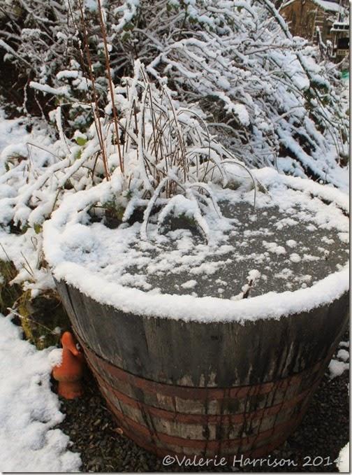 5-snow (2)