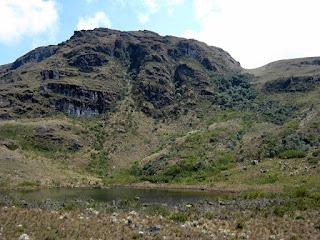 Chingaza-Sur-Organos (06).jpg