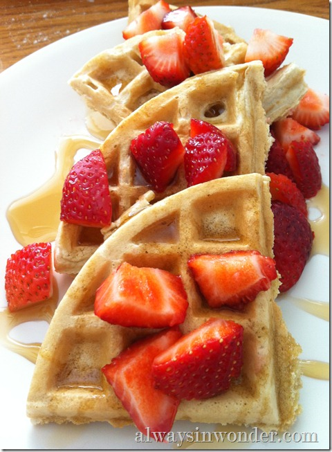 Waffles_from_alwaysinwonder.com