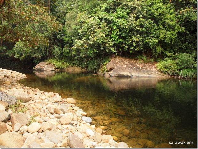 reflections_river_sarawak