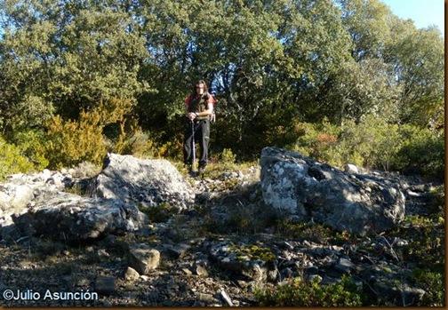 Dolmen de Puyomediano