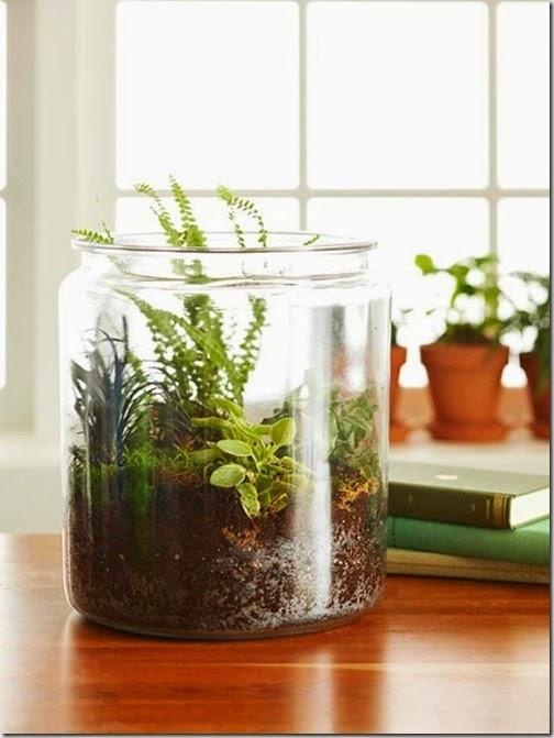 tabletop-terrarium-bhg