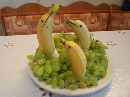 Дельфинарий в винограднике