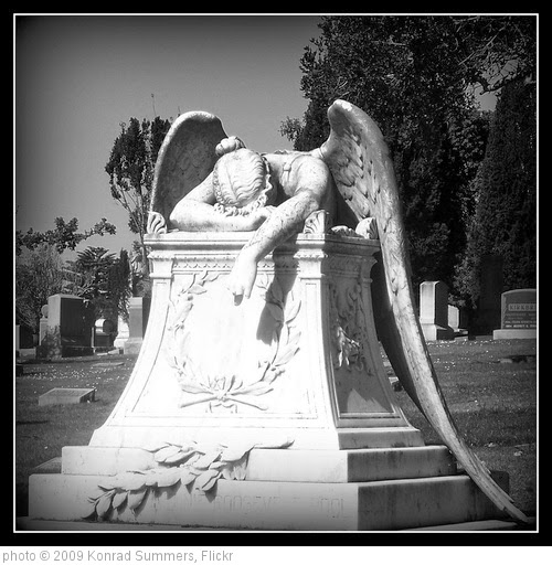 'Angel of Grief' photo (c) 2009, Konrad Summers - license: https://creativecommons.org/licenses/by-sa/2.0/