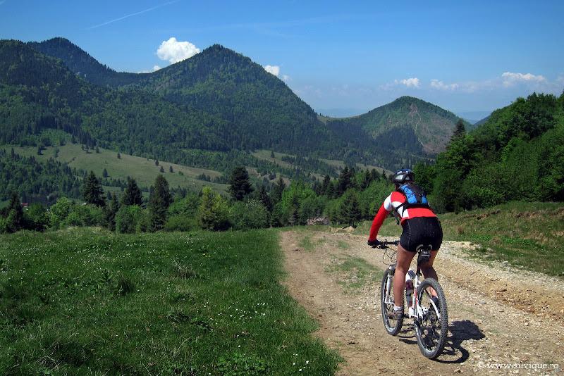 Tura de bicicleta in zona Azuga