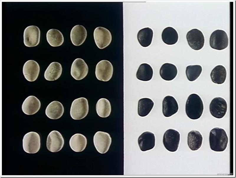 jan svankmajer a game with stones 1965 emmerdeur_64