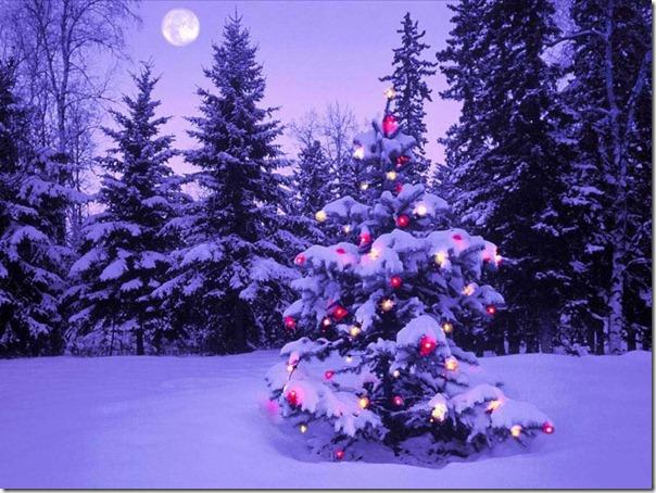 paisajes navidad (11)