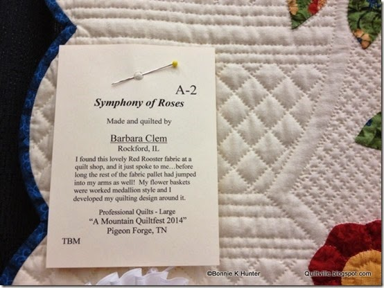 MountainQuiltFest_Mar2014 065