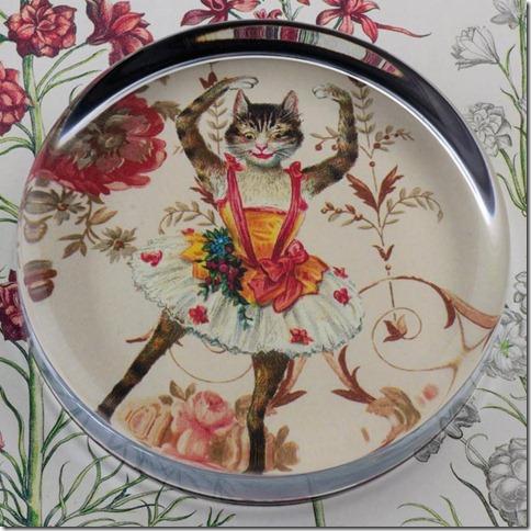 dancing kitten weight