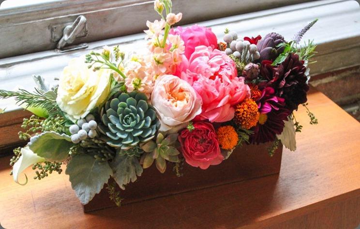 559055_449939311729212_1179051010_n primary petals