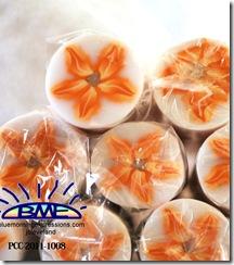 PCC-2011-1008