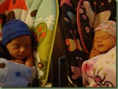 babies 089