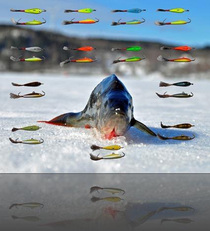 ÄSSÄ Fiskewebben
