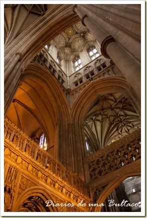 Canterbury-11