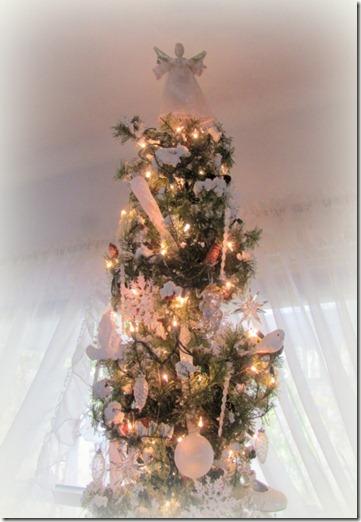 Tree #2 - 3 (480x640)