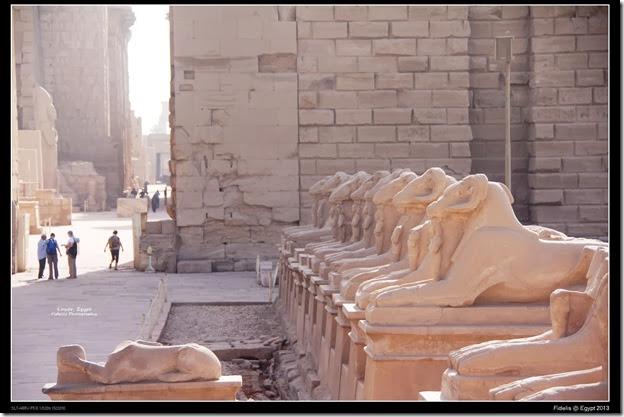 Egypt Day 11_09-1