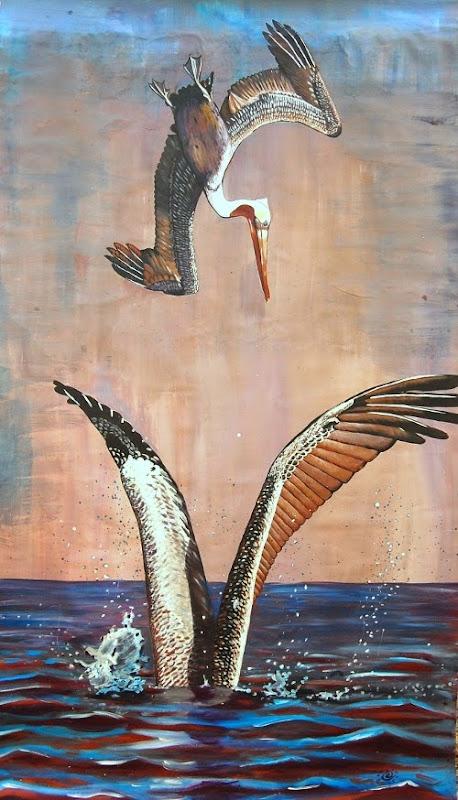 anastasiya bachmanova pelican dive