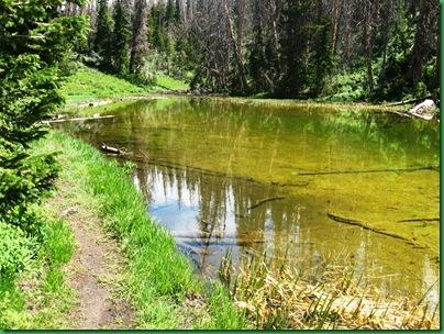 Alpine Pond 037