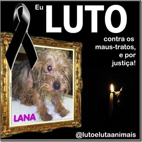 luto_lana