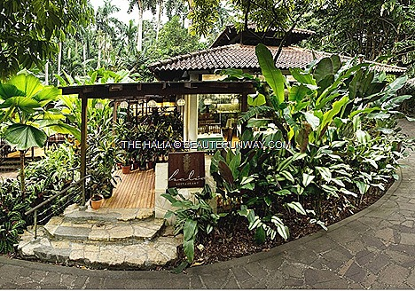 Halia Restuarant Singapore  Botanic gardens at Ginger Garden