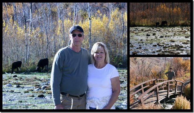 2011-10-23 Sunday Drive2