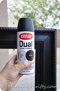 krylon dual