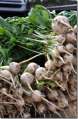 fall produce 1112 (35)