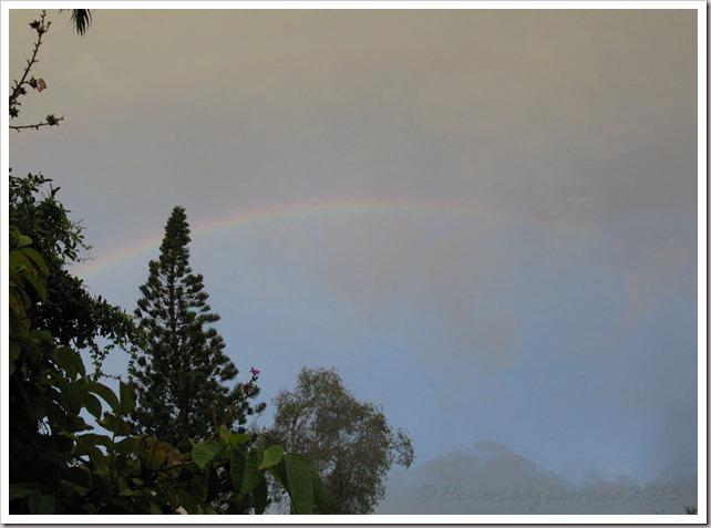 07-03-morning-rainbow2