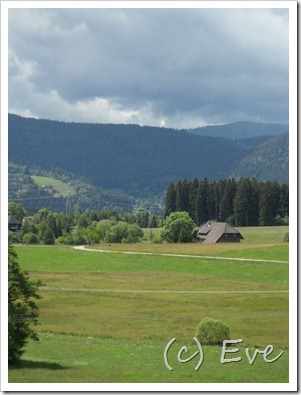 Juni 2011 Schwarzwald 010
