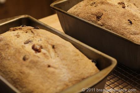 spelt-bread-pecans-raisins_0427