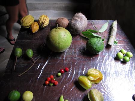 16. fructe exotice.jpg