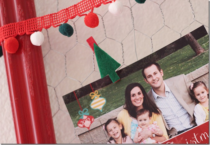 attach photos to chicken wire with clothes pins