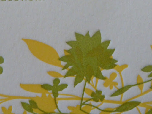 Here you can see up close what overprinting looks like. See the yellow popping through the green?
