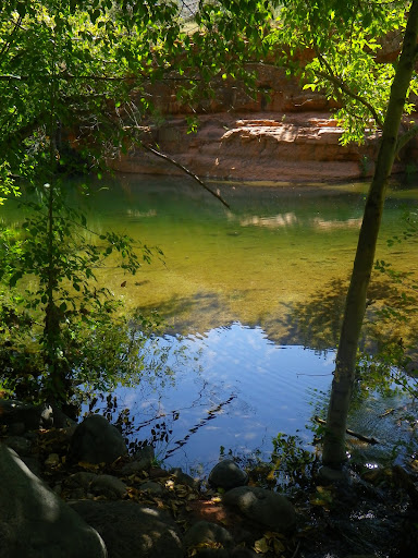 When Marion mentions bottle-green pools, this is what she's talking about.