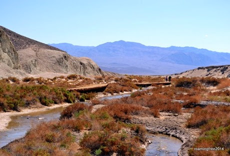 Salt Creek - hardly looks like Death Valley