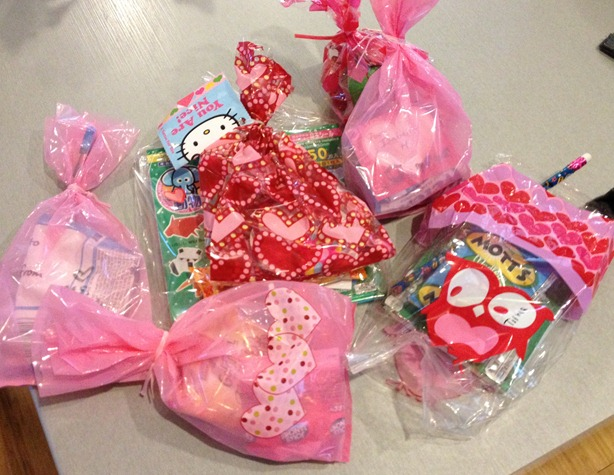 img_9518 - Valentine Bags For School