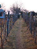 South Africa - 003.JPG