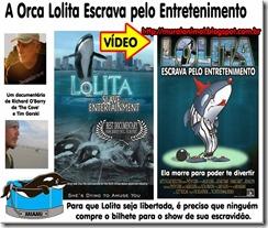 orca_lolita_thumb[1] (1)