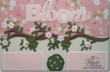 cricut bloom title close up