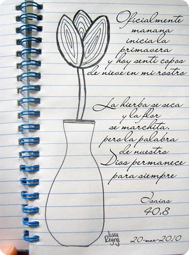 La hierba se seca y la flor se marchita pero la palabra de nuestro Dios permanece para siemrpe Isaias 40.8
