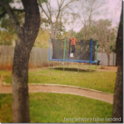 trampoline joy