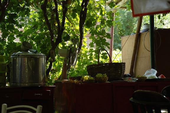 Turfan - Putaogou le raisin au restaurant