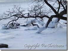 Vinterbillede 24. marts 2013