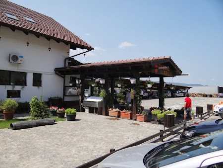 Taverna Sarbului Turnu Severin