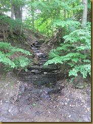 2011-6-10 geocache NY small falls (7)