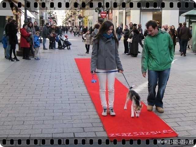 ENERO-RED CARPET