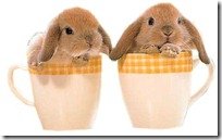conejos pascua (33)