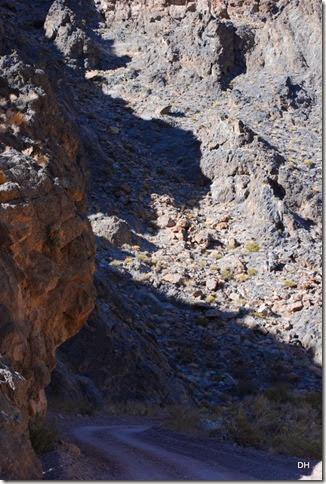 11-08-13 A DV 4x4 Titus Canyon Road (283)